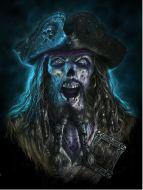 3D Picture Captain Grimbeard - (Earn 0 reward points on this item worth $0.00)