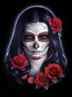 3D Picture Sugar Skull - (Earn 0 reward points on this item worth $0.00)